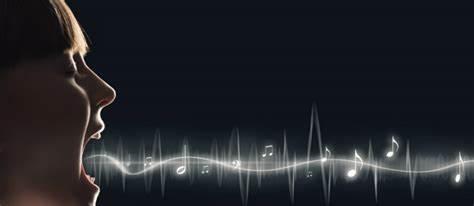 ¿Es la voz un dato personal?